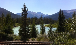 Bow River from Hwy. 1A